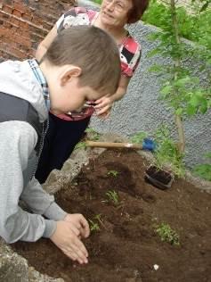 Экологическая акция цветок для клумбы